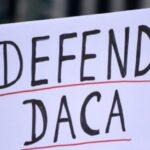 Ouvidor da Imigração recomenda que 'dreamers' renovem autorizações de trabalho